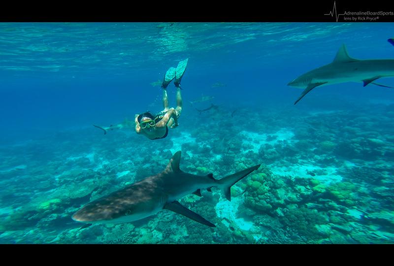 Cocos Island-9
