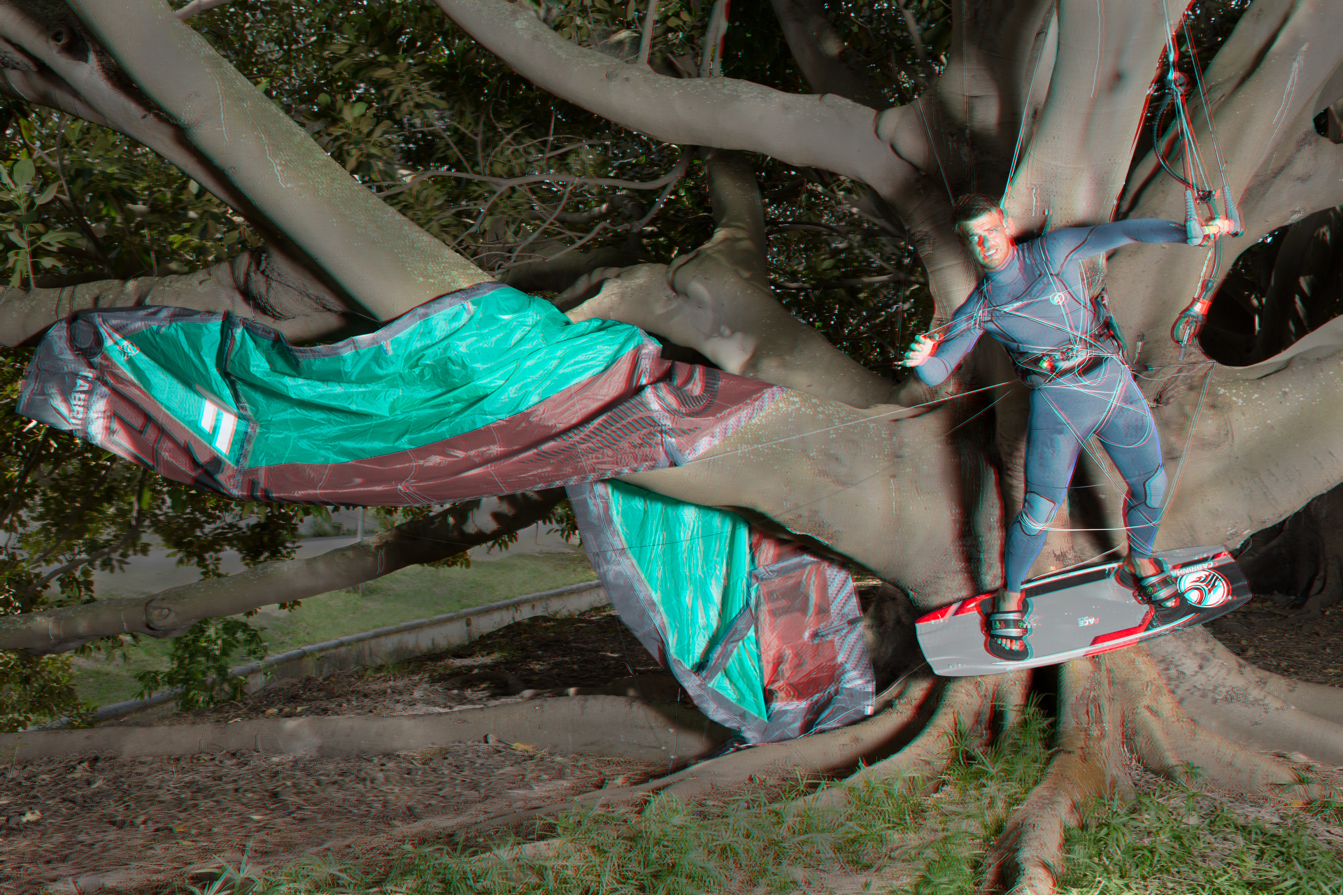Nick_In_Tree_flat
